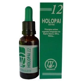 Pai 12 Holopai Gotas Equisalud (31 ml.)